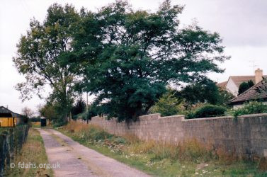 Badgers Walk 1999