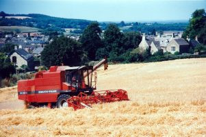 Barley Harvest Folly Hill 2