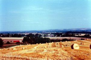 Barley Harvest Folly Hill