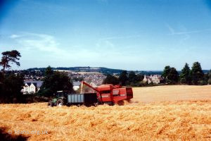 Barley Harvest Folly Hill 5