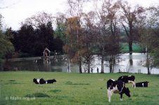 Faringdon House Lake