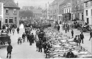 Faringdon Market 1904 Mp