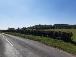 Highworth Road Badbury Hill 2020