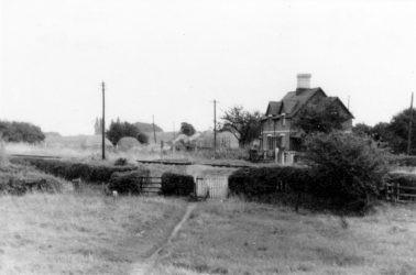 Oriel Cottages 1953