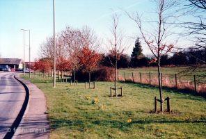 Park Road C1990s