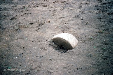 Saunders Field Quern Stone