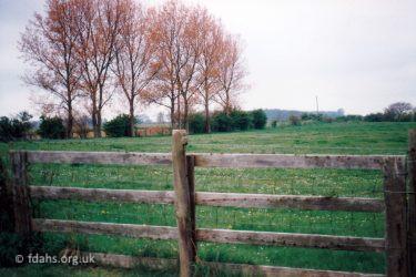 Saunders Field View
